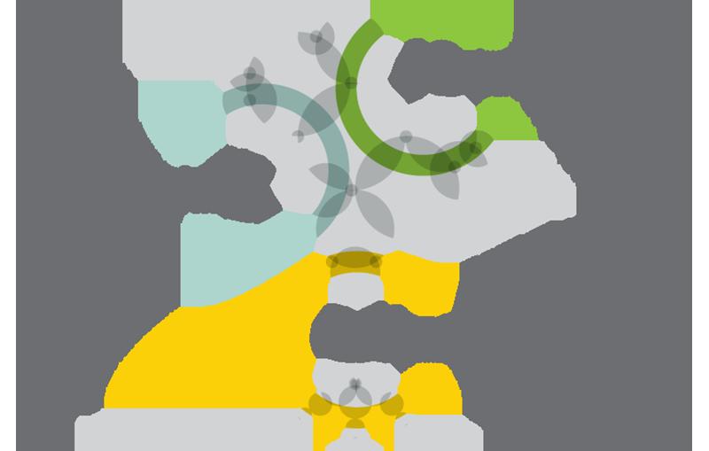Os Três Pilares do Plano Estratégico da BIOFUND