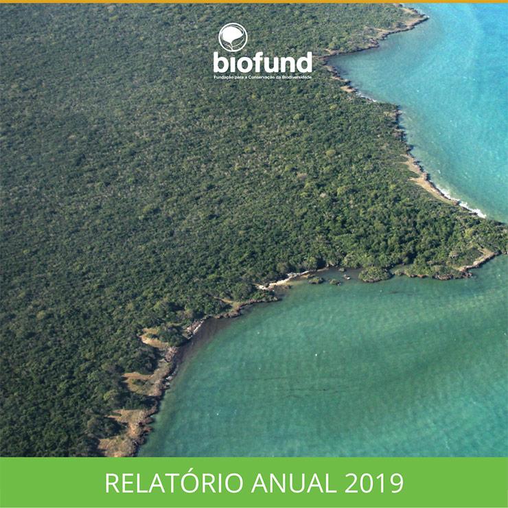 Relatório-Anual-2019