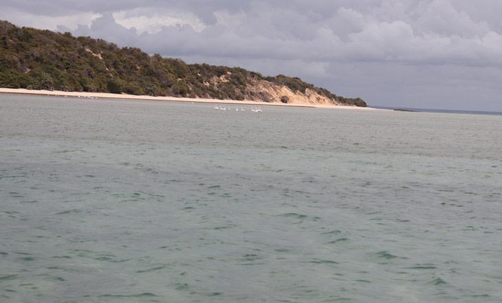 Biodiversiodade-do-Parque-Nacional-do-Arquipélago-de-Bazaruto