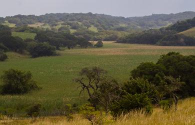 BIOFUND assegura 11 900 000 hectares de biodiversidade protegida até Junho de 2021 em Áreas de Conservação do país