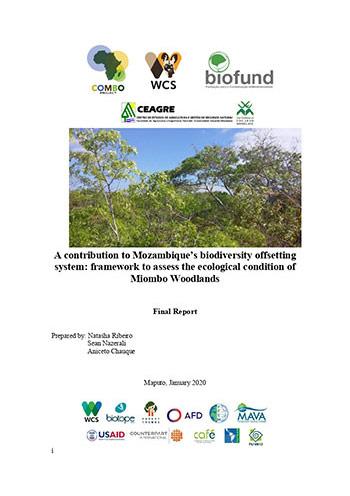 Uma contribuição para o sistema de contrabalanços de biodiversidade de Moçambique: quadro para avaliar a condição ecológica da Floresta de Miombo
