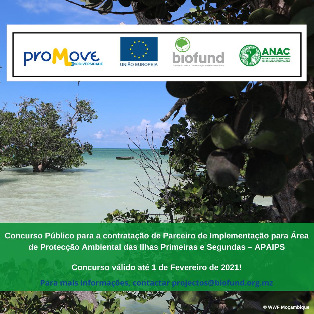 Conc01.2021 - Concurso Público para contratação de Parceiro de Implementação para Área de Protecção Ambiental das Ilhas Primeiras e Segundas - APAIPS (5)