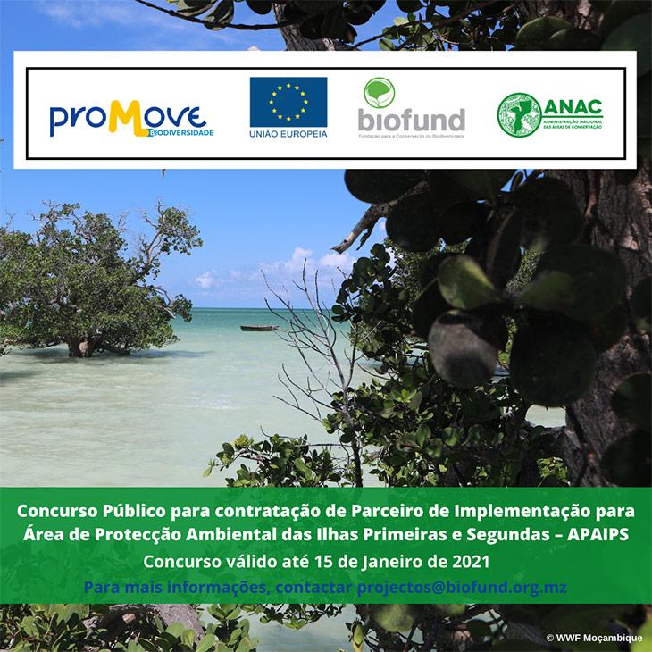 Concurso-Público-para-contratação-de-Parceiro-de-Implementação-para-Área-de-Protecção-Ambiental-das-Ilhas-Primeiras-e-Segundas---APAIPS-(4)