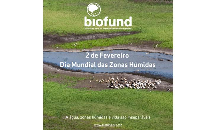 Dia-Mundial-das-Zonas-Húmidas