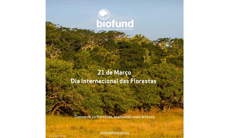 Dia-Internacional-das-Florestas_21032021